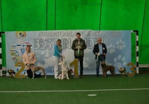 Dog Show Makedonija 2019