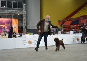 Dog Show Skoplje 2021